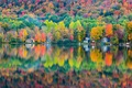 Picture home, lake, reflection, autumn, forest
