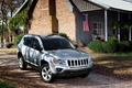 Picture jeep, SUV, house, car, yard, jeep-compass