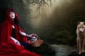 Picture Little red riding hood, wolf, forest, nature