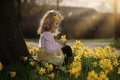 Picture flowers, spring, girl