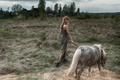 Picture Anastasia Shcheglova, horse, pony, Nastya, Tatiana Mercalova