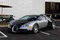 Picture Bugatti, Veyron, Black, Silver