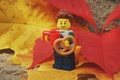 Picture bisira, lego, food, autumn, leaves