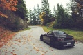 Picture S2000, road, trees, Honda, autumn, leaves