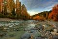Picture Alaska, stones, autumn, stream, river, forest