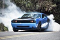 Picture Auto, Road, Trees, Smoke, Tuning, Machine, Dodge, Challenger