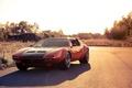 Picture nature, rechange, de tomaso pantera, sports car