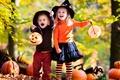 Picture autumn, joy, Pumpkin, Autumn, Halloween, pumpkin, Halloween, children, girl, hat