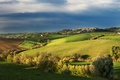 Picture Italy, trees, the village, Tuscany, field, blue, the sky, autumn, clouds