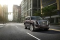 Picture SUV, Cadillac Escalade, the city, car
