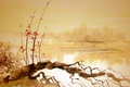 Picture Chinese painting, snag, river