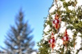 Picture snow, winter, toys, Christmas, tree, new year, decoration, the sky
