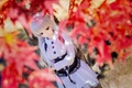 Picture sadness, autumn, doll, leaves