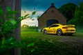 Picture Porsche, Cayman, Car, Nature, Color, Yellow, Summer, GT4, Rear