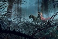 Picture forest, Girl, guy, trees, horse, dress