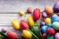 Picture flowers, holiday, Board, eggs, Easter, tulips, basket, Easter, eggs