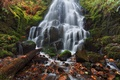 Picture autumn, leaves, stones, waterfall, moss, Oregon, cascade, Oregon, Columbia River Gorge, the Columbia river, Fairy ...