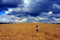 Picture clouds, anger, field, Girl