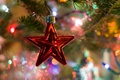 Picture toy, tree, new year, Christmas