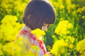 Picture flowers, girl, wallpapers, mood, children, flowers, nature, background, Wallpaper, brunette, plant, the sun, situation, yellow, ...