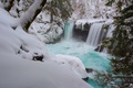 Picture waterfall, trees, snow, forest, winter