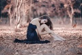 Picture autumn, leaves, girl, legs, Alessandro Di Cicco, A never ending story