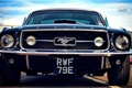 Picture Mustang, Ford, emblem, front, badge, bumper