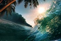 Picture palm trees, palm trees, Tropical paradise, Tropical Paradise, sunlight, sea wave, sea ​​wave, sea, wave, ...