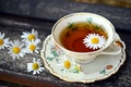 Picture chamomile, tea, Cup