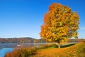 Picture boat, silence, tree, foliage, autumn, mood, hills, the sky, river