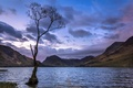 Picture sunset, mountains, lake, tree
