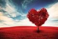 Picture heart, romance, tree, Valentine's day, tree, field, love, sky, clouds, clouds, Valentine's Day, love, romance, ...