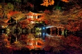 Picture Park, reflection, Daigoji, trees, Kyoto, pond, Japan, lake, Sakura