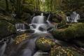 Picture autumn.stones, foliage, river, forest, nature
