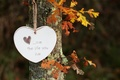 Picture leaves, tree, the inscription, heart, hanging