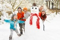 Picture winter, snow, mood, new year, family, snowman
