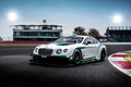 Picture Bentley, Continental, Bentley, GT3, continental