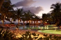 Picture the ocean, palm trees, the evening, pool