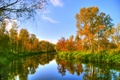 Picture Nature, Autumn, Trees, River