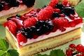 Picture cake, cream, food, cake, dessert, dessert, sweet, raspberries, raspberry, cream, cheesecake, food, cake, blackberry, red ...