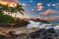 Picture palm trees, Maui, Hawaii, tropics., surf, maui, hawaii, quiet, the ocean, clouds, rocks, stones