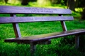 Picture shop, bench, bench, benches, greens, shop, mood, shop, benches, grass