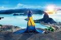 Picture city, cinema, sky, sea, landscape, bird, blue, mountains, clouds, sun, macaw, movie, animal, Brazil, buildings, ...