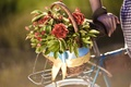 Picture flowers, flowers, bike, widescreen, bicycle, hand, blur, HD wallpapers, Wallpaper, leaves, girl, full screen, background, ...