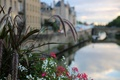 Picture the city, France, flowers, bokeh, Metz