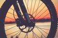 Picture bike, wheel, silhouette, bike, disk, plug, spokes, specialized, xfusion, vegeance