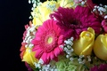 Picture flowers, yellow, bouquet, roses, flower, pearl, yellow, beautiful, pearl, gerbera