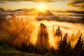 Picture the sky, the sun, clouds, trees, mountains, fog, Forest