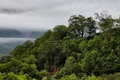 Picture Russia, trees, mountains, clouds, Kamchatka
