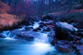 Picture autumn, forest, trees, river, stones, stream